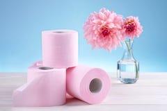 清洁家庭卫生学纸张产品洗手间 免版税图库摄影