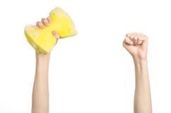 清洗房子和卫生题目:在演播室递拿着一块黄色海绵湿与在白色背景隔绝的泡沫 图库摄影