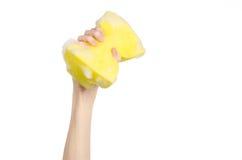 清洗房子和卫生题目:在演播室递拿着一块黄色海绵湿与在白色背景隔绝的泡沫 免版税库存照片