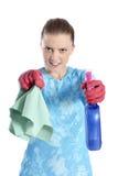 清洗房子 免版税图库摄影