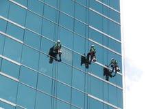 清洗玻璃大厦的人由绳索通入在高度 免版税库存照片