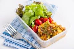 清洗食物午餐盒 免版税图库摄影