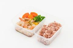清洗食物午餐盒 图库摄影