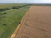 清洁麦子收割机 顶视图 免版税库存图片