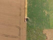 清洁麦子收割机 顶视图 库存照片