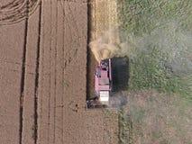清洁麦子收割机 免版税库存照片