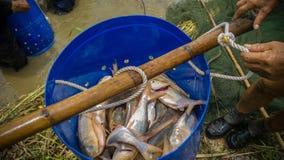渔假日 免版税库存图片