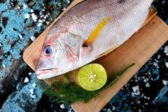 从渔场市场的红鲷鱼鱼 库存照片