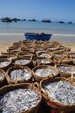 渔场海滩位于等待上载在卡车上的许多篮子到加工设备 免版税库存照片