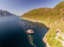 渔场照片在挪威 蓝色海和山与植被 空中射击 顶视图 免版税库存图片