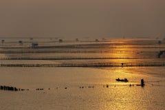 渔夫剪影牡蛎农场的在轰隆Taboon,泰国的日出背景的 免版税图库摄影