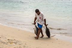 渔夫和两金枪鱼 库存图片