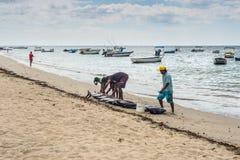渔夫和大金枪鱼在绢毛猴靠岸 免版税库存照片