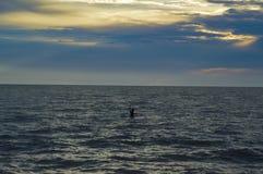 渔夫和海 库存照片