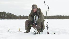 渔夫在冬天拔出鱼 股票视频