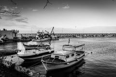 渔夫在冬天-土耳其保护 免版税库存照片