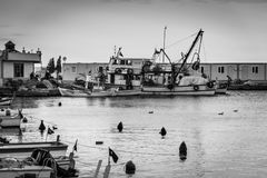 渔夫在冬天-土耳其保护 库存照片