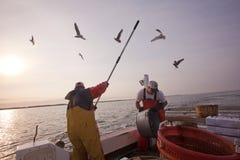 渔夫在工作 免版税库存照片