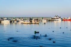 渔夫在明亮的天-土耳其保护 库存照片