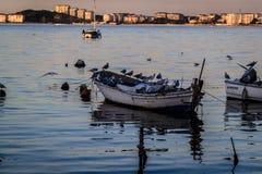 渔夫在老小游艇船坞保护 库存图片