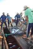 渔夫在芽庄市海湾的海收集拖网抓的金枪鱼 图库摄影