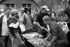 渔夫在陈列捉住了在鱼市上 免版税图库摄影
