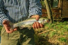 渔夫在他的手上的拿着鳟鱼 免版税库存照片