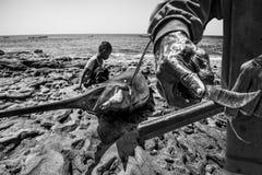 渔夫家庭 免版税库存照片