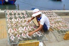 渔夫干燥鱼在阳光下 库存图片