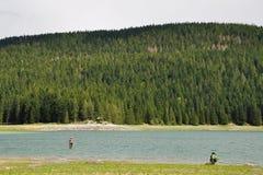 渔夫渔在云杉的森林背景的河  图库摄影