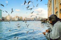 渔夫渔在迪拜,阿拉伯联合酋长国, 12月的 免版税库存图片