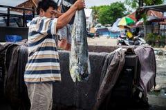 渔夫称被抓的鱼待售在鱼市上 免版税库存照片