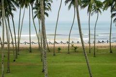 渔夫,斯里兰卡 库存图片