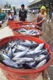 渔夫登陆从渔船的金枪鱼到市场 免版税库存图片