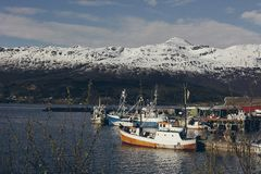 渔村在挪威 库存图片