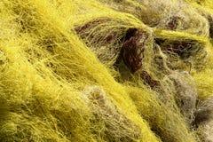 渔网 免版税库存图片