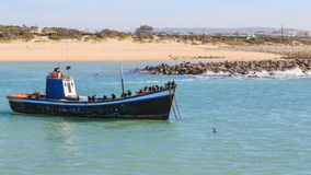 渔船和鸬鹚 免版税库存图片