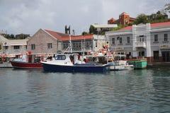 渔船在圣乔治` s小游艇船坞,格林纳达 免版税库存照片