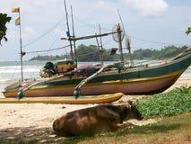 渔船在斯里兰卡 免版税库存照片