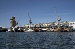 渔船在旁边在开普敦港口南非 图库摄影