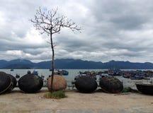 渔船在Nga的Trang,越南小游艇船坞 免版税库存照片
