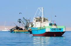 渔船在Paracas国家公园 秘鲁 免版税库存照片