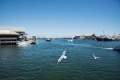 渔船港口和小游艇船坞 免版税库存图片
