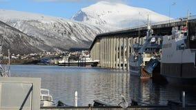 渔船航行在有靠码头的小船和强大山背景的tromso桥梁下在北挪威 股票录像
