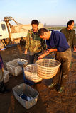 渔贸易商 图库摄影