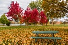 渥太华在秋天,加拿大 免版税库存照片