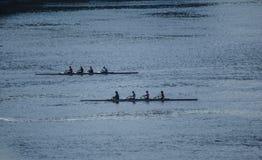 渥太华河的划船者 免版税图库摄影