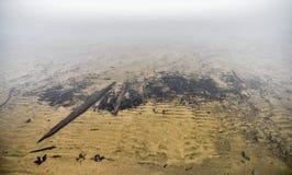 渥太华河-水下的有机漂流木头残骸 免版税库存照片