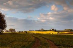 渥斯特夏农田,英国 库存照片