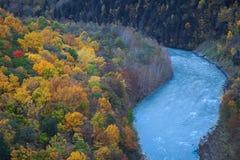 温和地蜿蜒的河 免版税库存图片